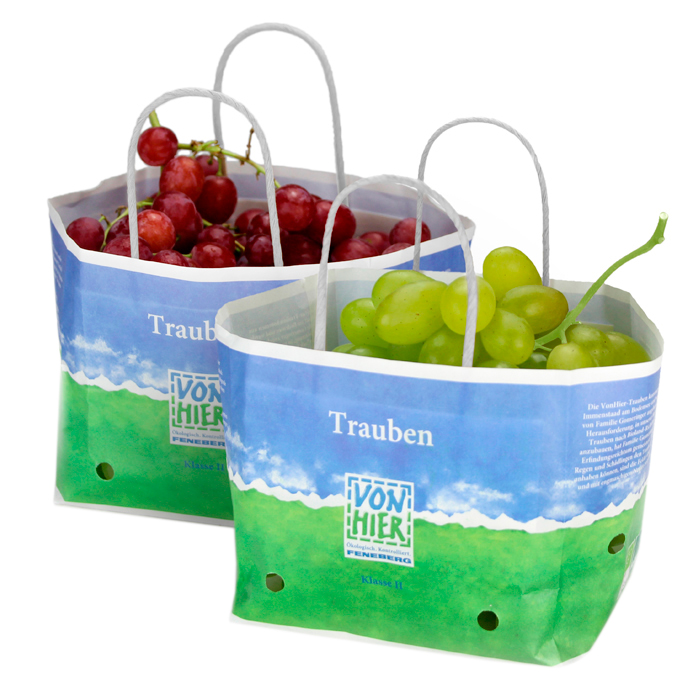 Wet strength paper bag with ventilation and white handle for grape